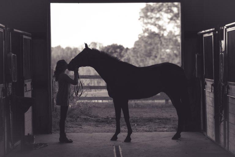 Sync Equestrian Riding Breeches